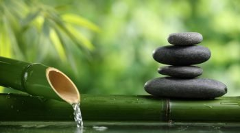 La meditazione consapevole: Mindfulness