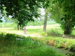 Park & e-Bike 1