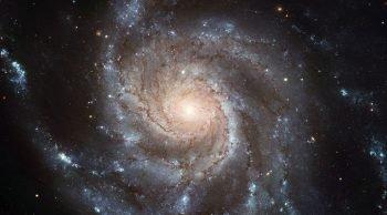 Con gli occhi all'insù                          (Astronomia al Parco)